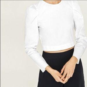 Zara White Poplin Crop Top